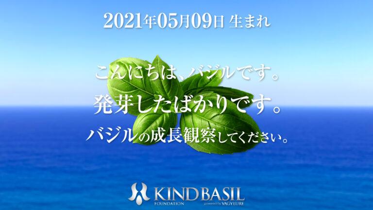 KIND-BASIL-WP_PIX_20210509a